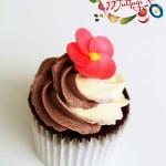 çift renk kremalı kakaolu cupcake2
