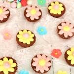 papatya cupcake
