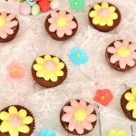 papatya cupcake1