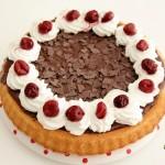 cikolatalı visneli tart kek