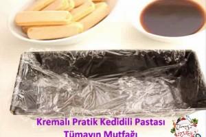 Kremalı Pratik Kedidili Pastası